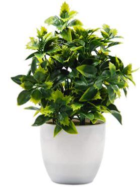 Plantes deucalyptus artificielles