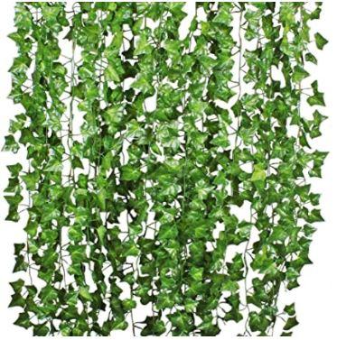 lierre artificielle plante similaire a la vigne